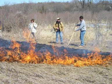 burn training_2010_385x288