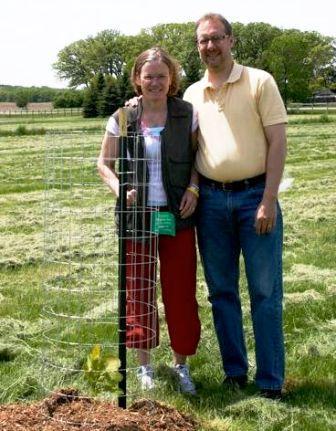 memorial benkendorfs planting